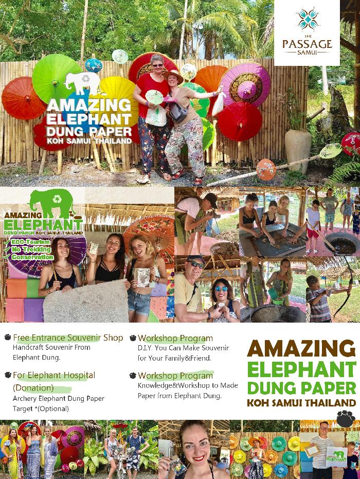 Amazing Elephant Dung Paper Koh Samui Thailand